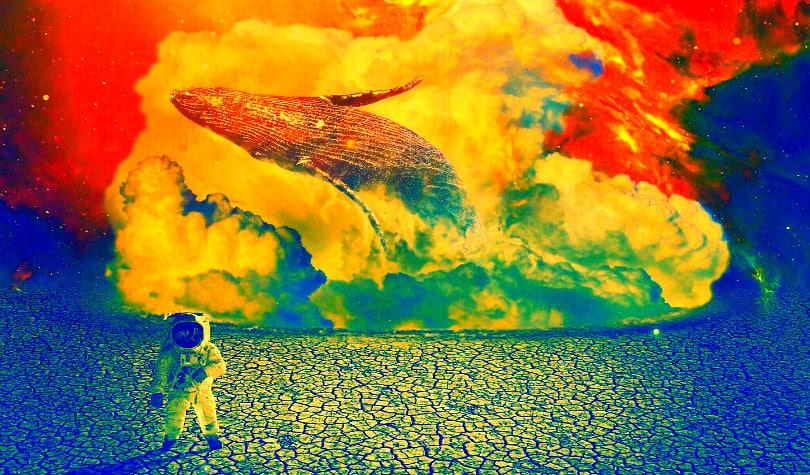 крипто киты Биткойн